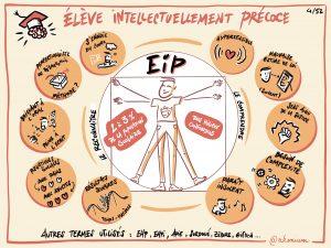 EIP - HP - Enfant intellectuellement précoce - Haut potentiel