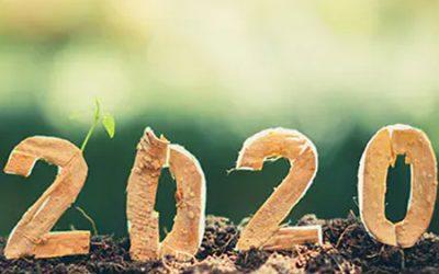 Bilan positif de l'année 2020, interview d'Anna Ferragut et Sophie Mourier